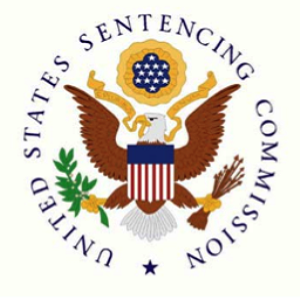 Joe Murphy's filing with the US Sentencing Commission